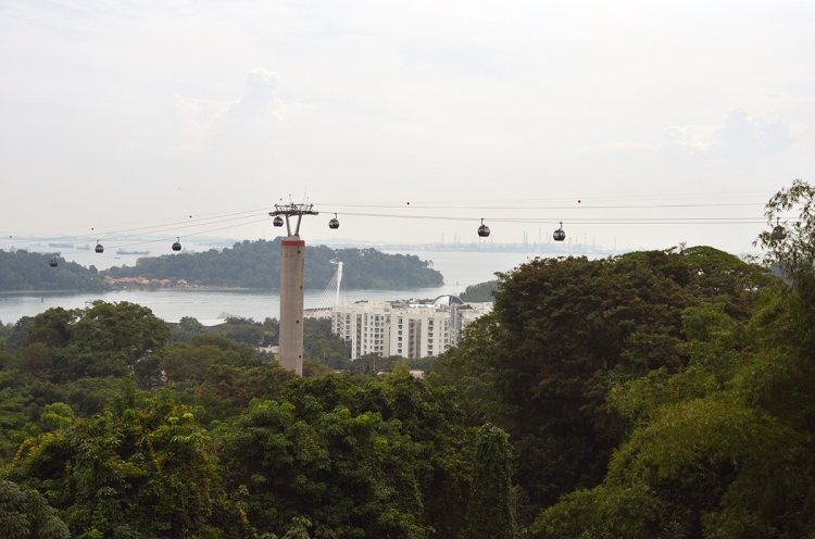 Hike at Mt. Faber